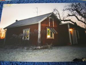 Ginnie, 12 år på besök hos Anders när den första snön hade fallit. Hon kom inte med i full storlek på bilden (längst ner i högra hörnet). Hon har ett täcke på sig så hon inte ska frysa...